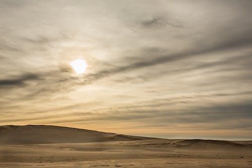 Foto stok gratis Abu-abu, alam, bagus