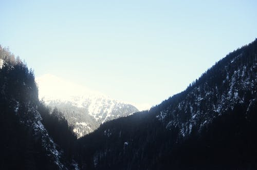 Photos gratuites de alpes, arbre, aube