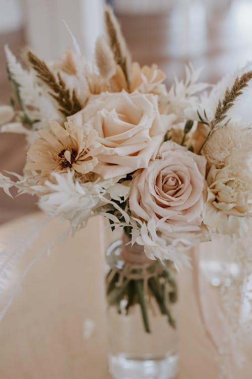 Blooming flowers in water in vase