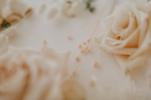 From above of blossoming roses with thin stems of dry plant prepared for making wedding floral decoration