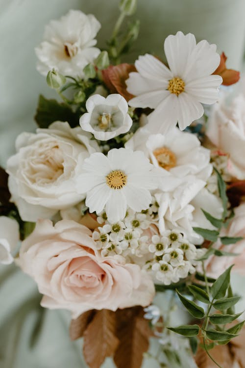 High angle of bunch of fresh delicate plants including roses and cosmos flowers for romantic occasion