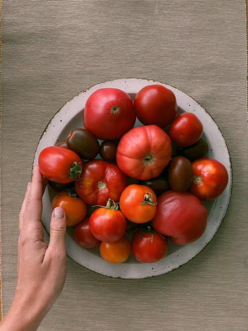 Red Tomatoes on White Ceramic Bowl