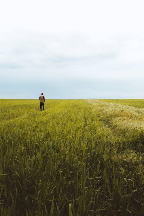 Unrecognizable person walking on grassy meadow