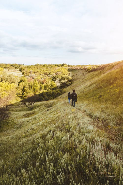 Unrecognizable people hiking in hilly terrain