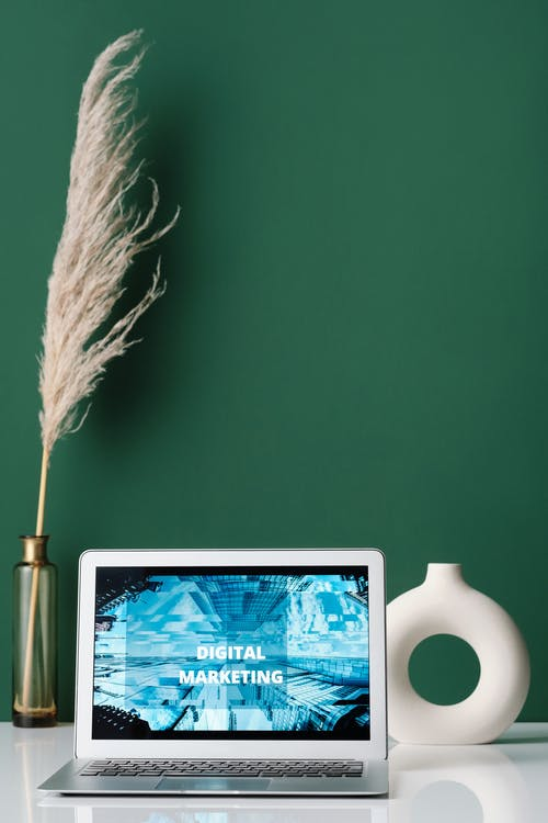 White Feather on Green Wall