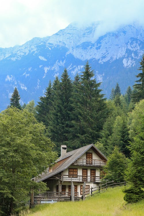 Wooden House Near Green Trees and Blue Mountain