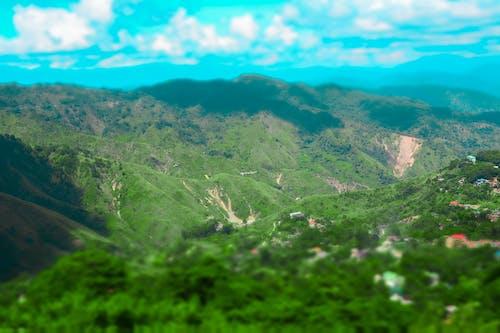 Fotos de stock gratuitas de fondo de montaña, fondo verde, fotografía de naturaleza