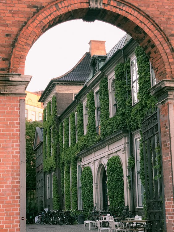 Brown Brick Building With Green Vines