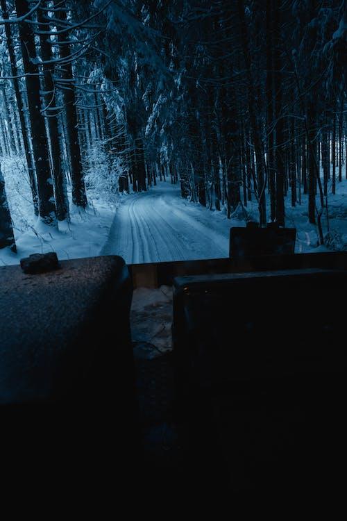 Gratis stockfoto met avond, backcountry skiën, bevroren