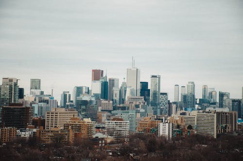 Skyscrapers on a City Skyline