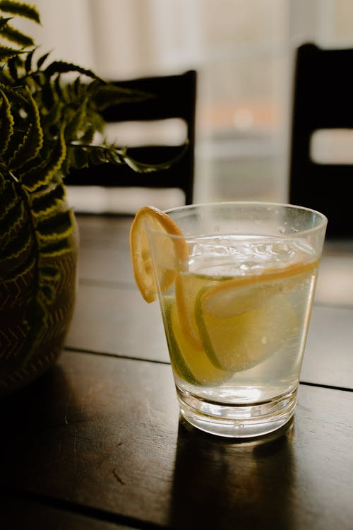 Glass of refreshing lemonade with slices of lemon and lime placed on table near green plant