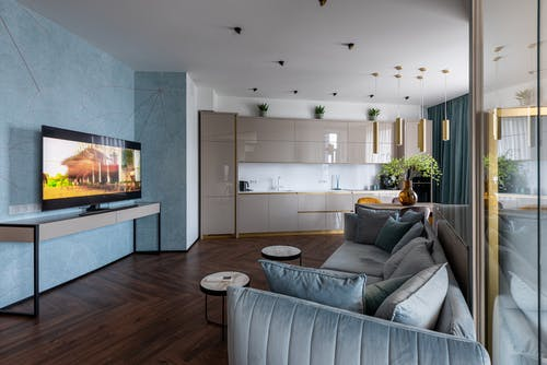 Interior of modern light apartment with comfortable sofas placed against TV set near kitchen counter with green plant at home