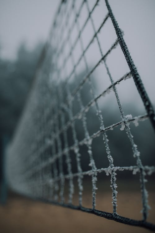 White Net With Spider Web