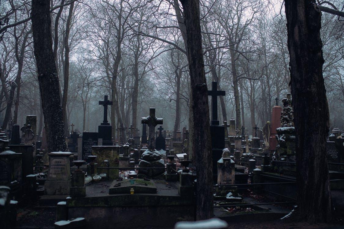 Kostnadsfri bild av bänk, begravning, depression