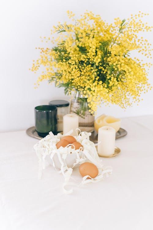 Gratis stockfoto met binnen, binnenshuis, bloemen