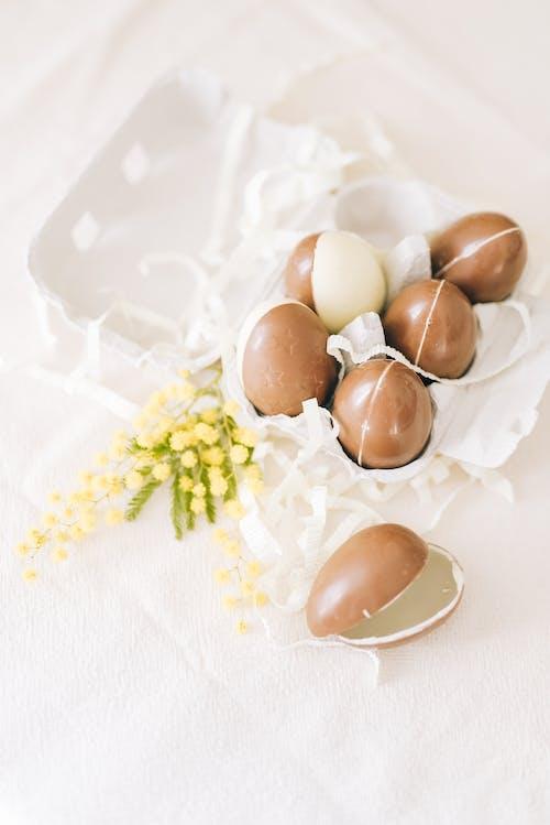 갈색 계란, 계란, 계란 트레이의 무료 스톡 사진