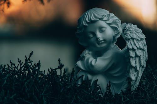 Free stock photo of angel, art, beautiful