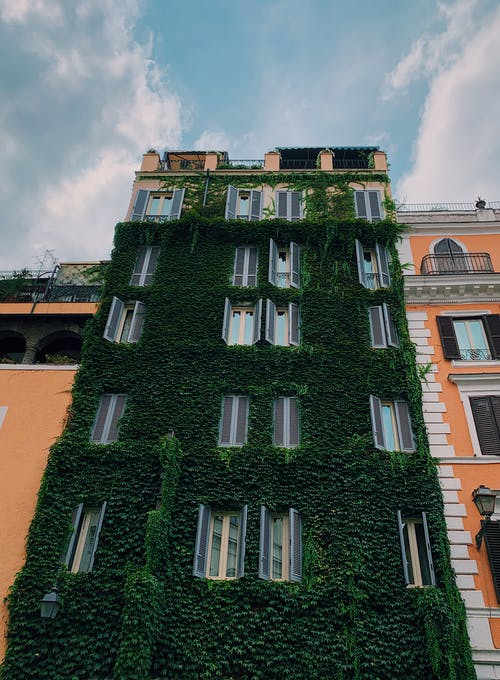 Free stock photo of ancient roman architecture, building, green building