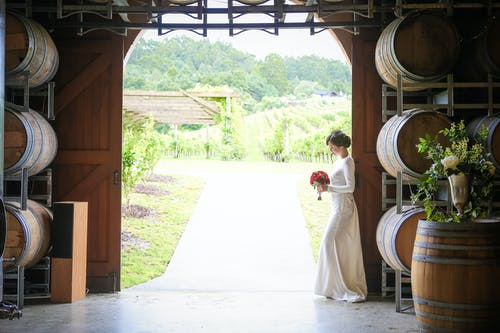 Bride with bouquet near winery with barrels and field with various grapes