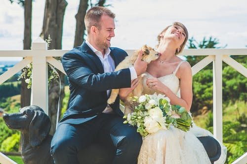 Smiling bride and groom with bouquet of flowers and dog licking neck while sitting on bench near dog statue in sunny summer day near fence and green plants and trees