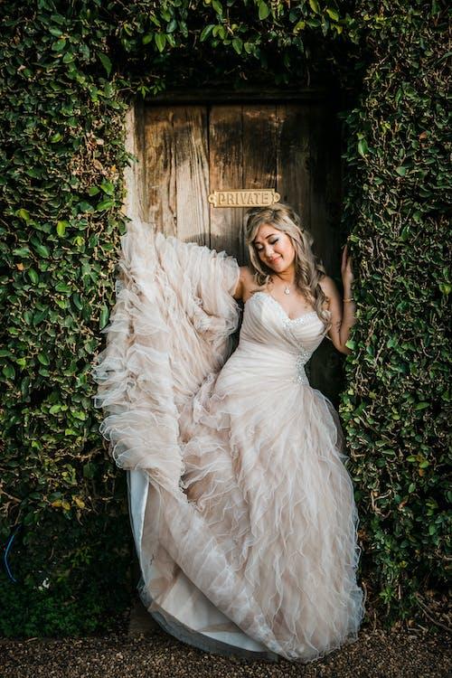 Free stock photo of adult, beautiful, bride