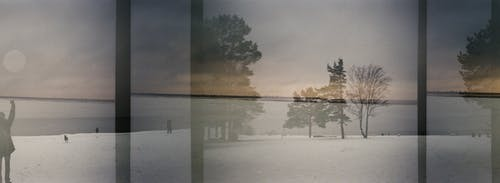 35mm, 35mmフィルム, ミスト, 冬の無料の写真素材