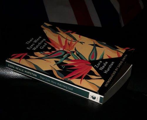 Fotos de stock gratuitas de columna vertebral del libro, fondo oscuro, libro, material de lectura