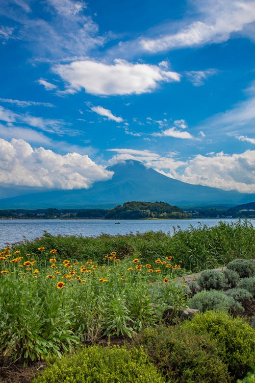 Free stock photo of beautiful nature, Beautiful Scenery, beauty in nature