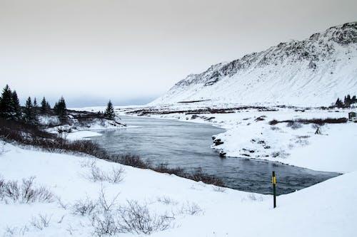 Безкоштовне стокове фото на тему «вода, гора, дерева, зима»
