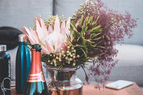 가구, 꽃, 꽃무늬의 무료 스톡 사진