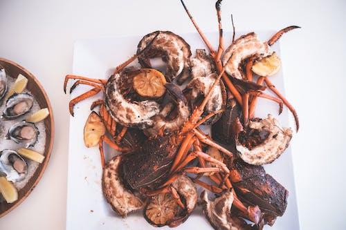 Immagine gratuita di affamato, appetitoso, aragosta