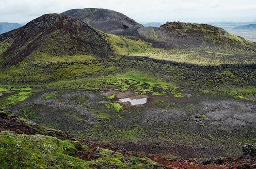 Free stock photo of nature, moss, hills, bog