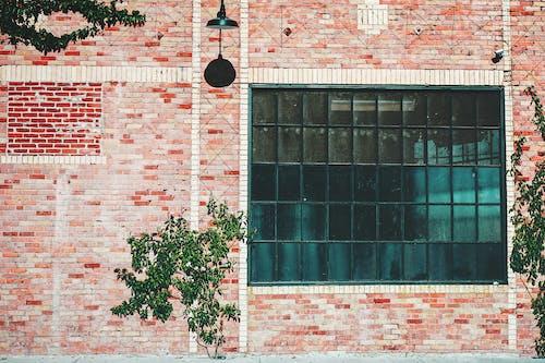 Foto stok gratis batu bata, dinding, industri