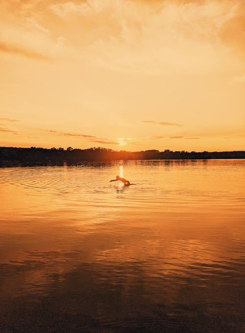Silhouette of person floating in rippling water of river surrounded by trees lightened by bright sunlight at sundown