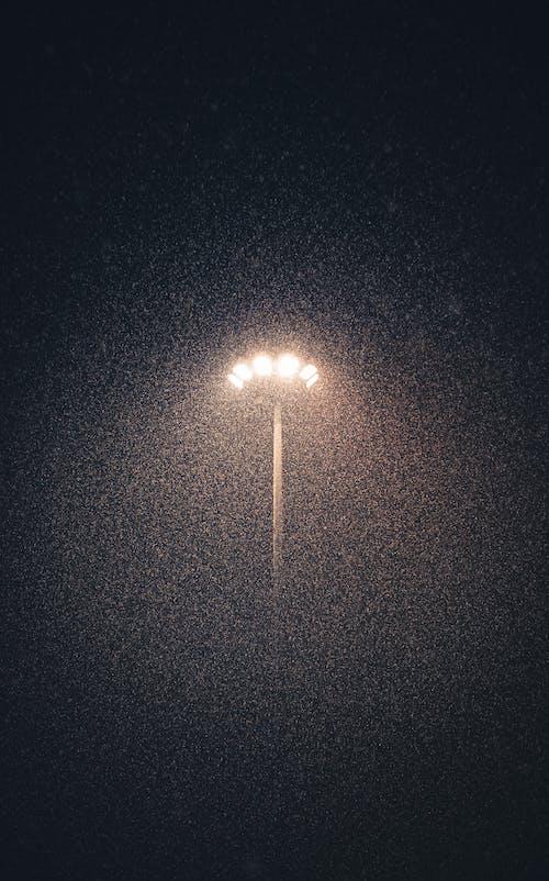 Free stock photo of dark, snowing, street light