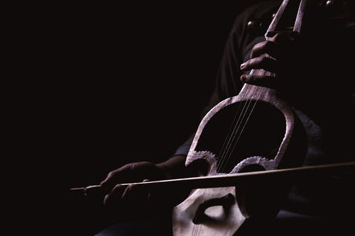 Free stock photo of man playing musical instrument, man playing sarangi, musical instrument