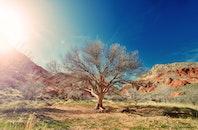 sun, desert, dry