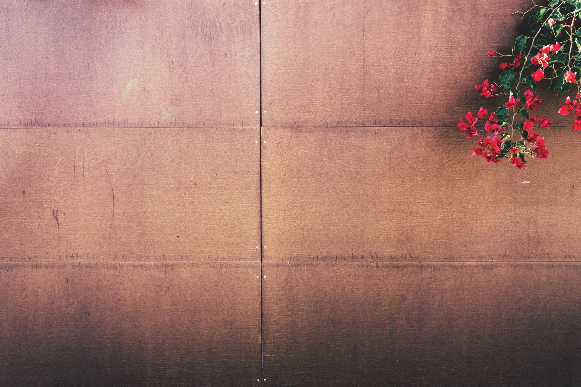 Free stock photo of whitespace, fence