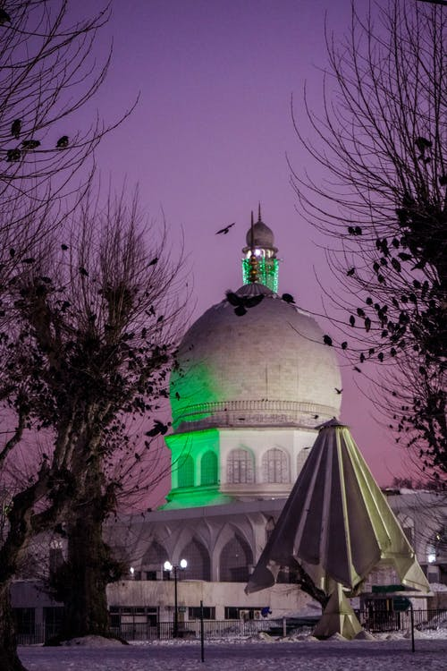 Low angle of domed mosque with bright lights with leafless trees in winter evening