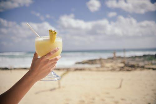 假日, 假期, 喝, 水果 的 免费素材照片