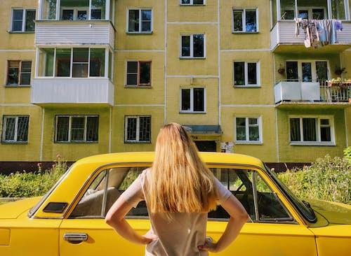 sarı arka plan içeren Ücretsiz stok fotoğraf