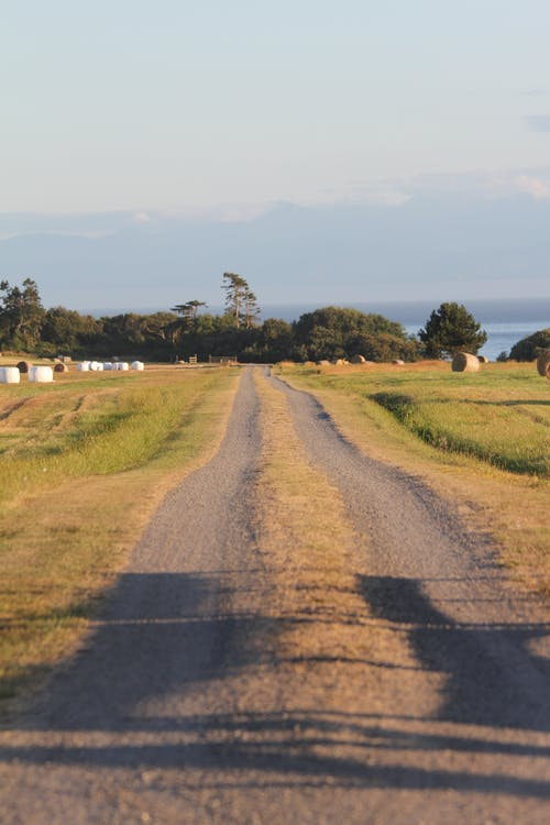 Country Road on Farm Field