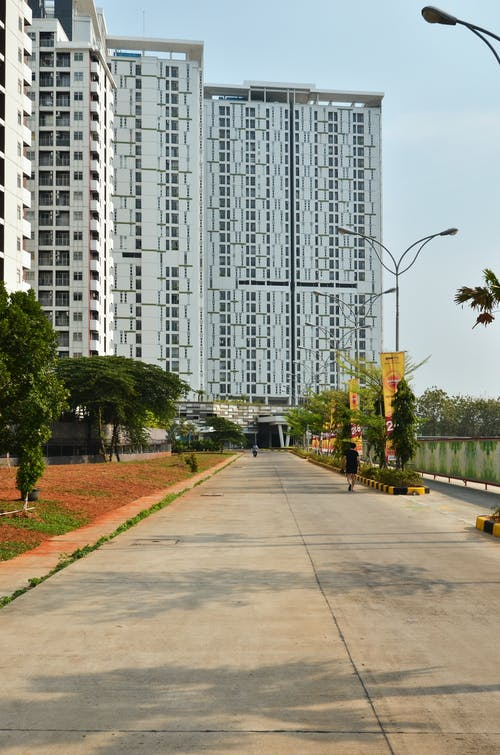 Green Trees Near High Rise Building