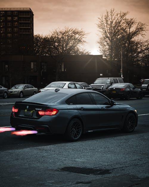 Foto stok gratis aspal, bergegas, blacktop, BMW