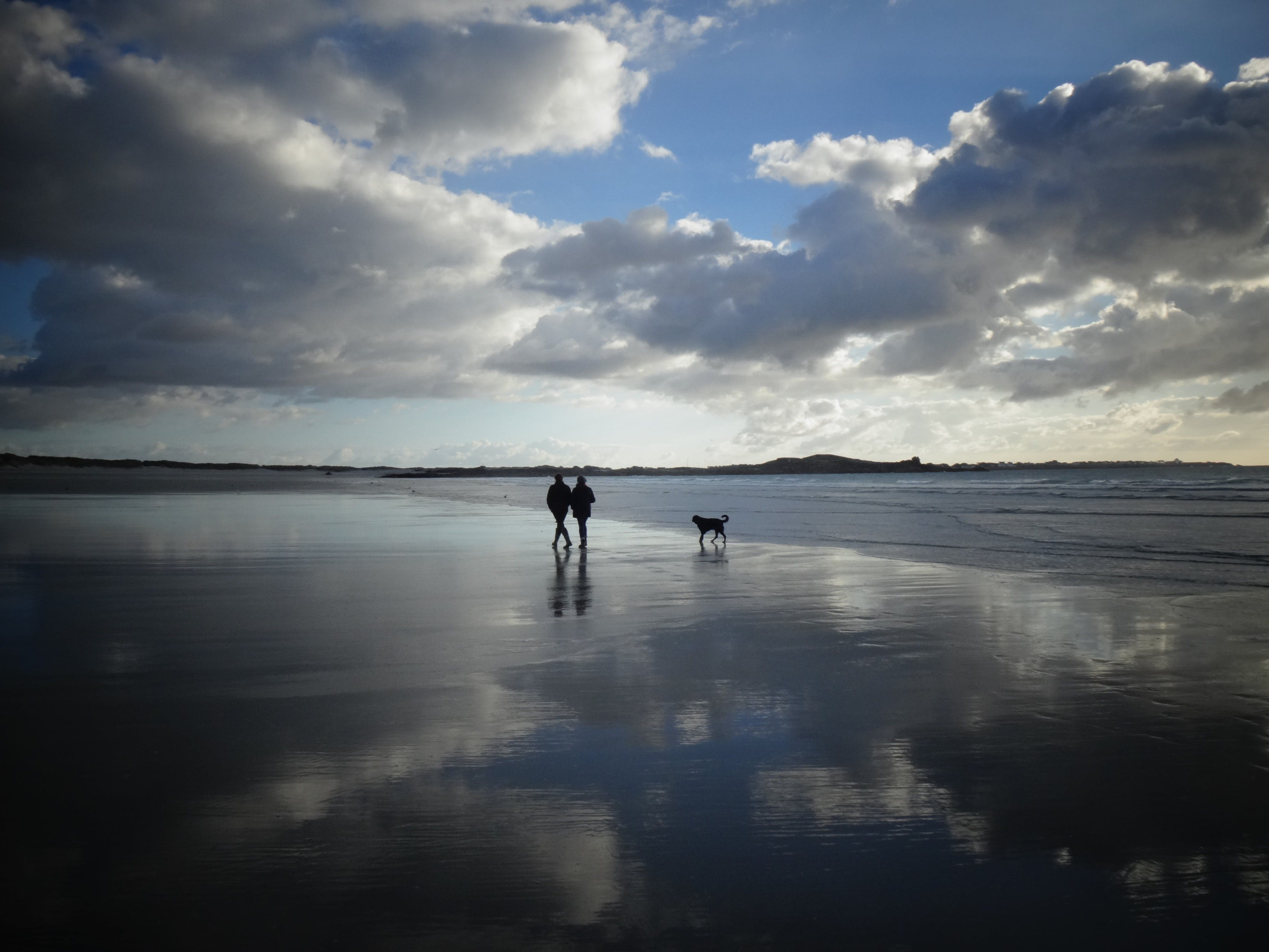 Two Person Walking on Seashore