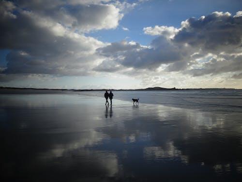 คลังภาพถ่ายฟรี ของ การเดิน, ชายหาด, ท้องฟ้า, ทะเล