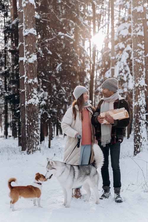 Foto d'estoc gratuïta de a l'aire lliure, adorable, adult, amor
