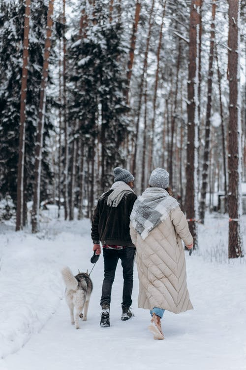 A Couple Walking Their Dog in the Snow