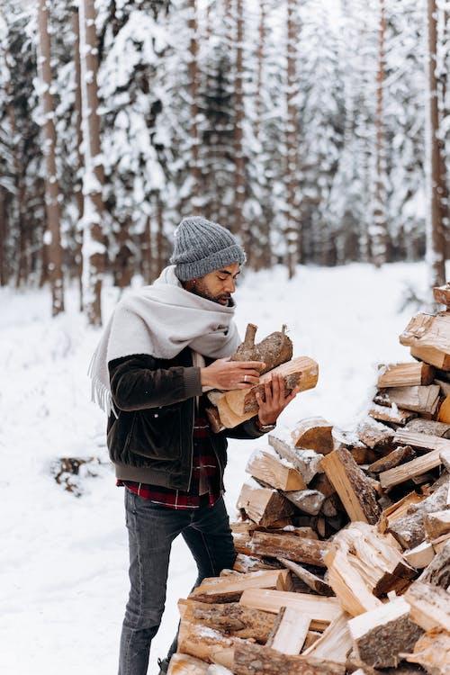 감기, 겨울, 겨울 자켓의 무료 스톡 사진