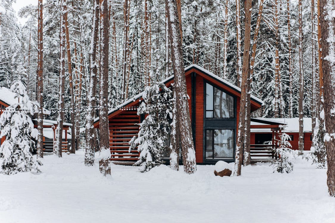 Brown Wooden House Covered With Snow Near Trees